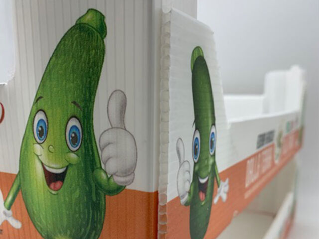 scatole-plastica-ortofrutta